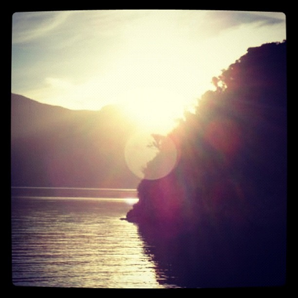 I wish I was in New Zealand instead of revising