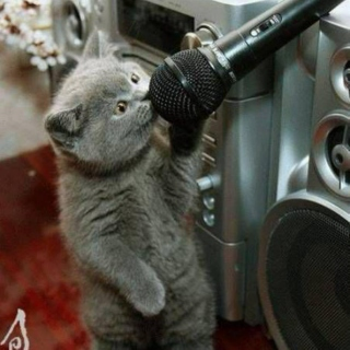 Music you cant help but sing to.