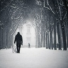 Songs for Winter