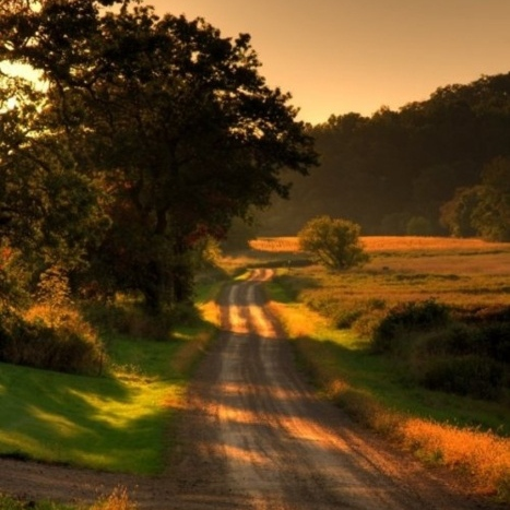 that dirt country road.