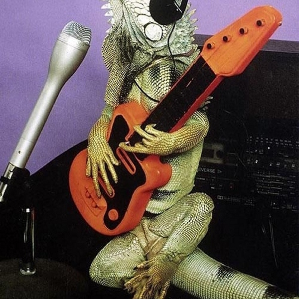 Now I'm in a rockin' band