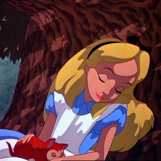Alice, you need to wake up.