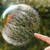 No One Can Burst my Bubble