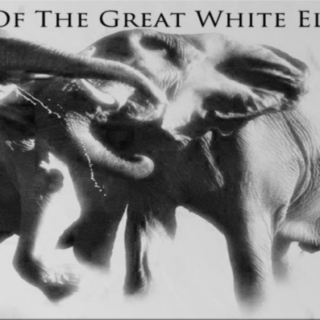 Curse of the Great White Elephant Weekly Playlist # 1