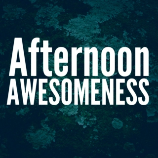 Afternoon Awesomeness