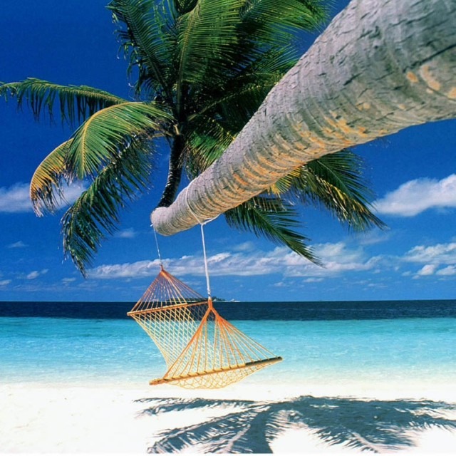 Relaxing songs to help you through the day