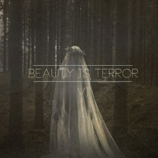 Beauty is Terror VI