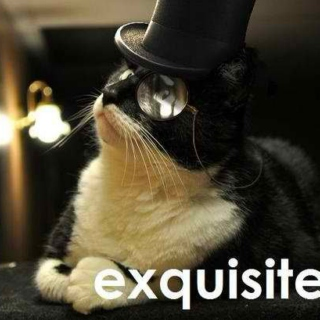 Dappercat Approved For Your Pleasure