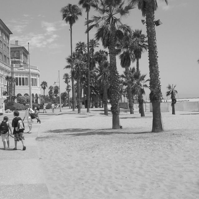 venice beach afternoon