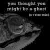 You Thought You Might Be A Ghost