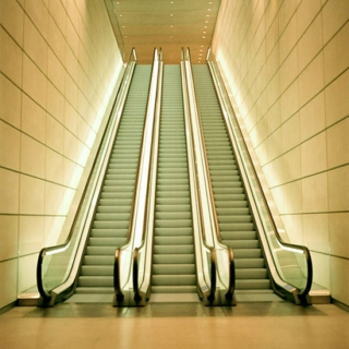 Elevated by Escalators in the Night Life