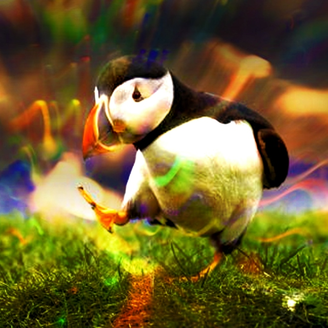 Dubstep Puffin is Pleased
