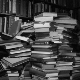 Climb the book pile and study.