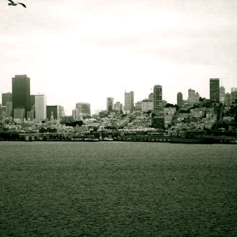 absorb the city.