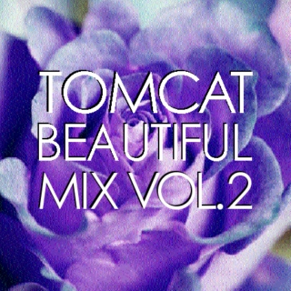 TomCat Beautiful Mix, Volume 2