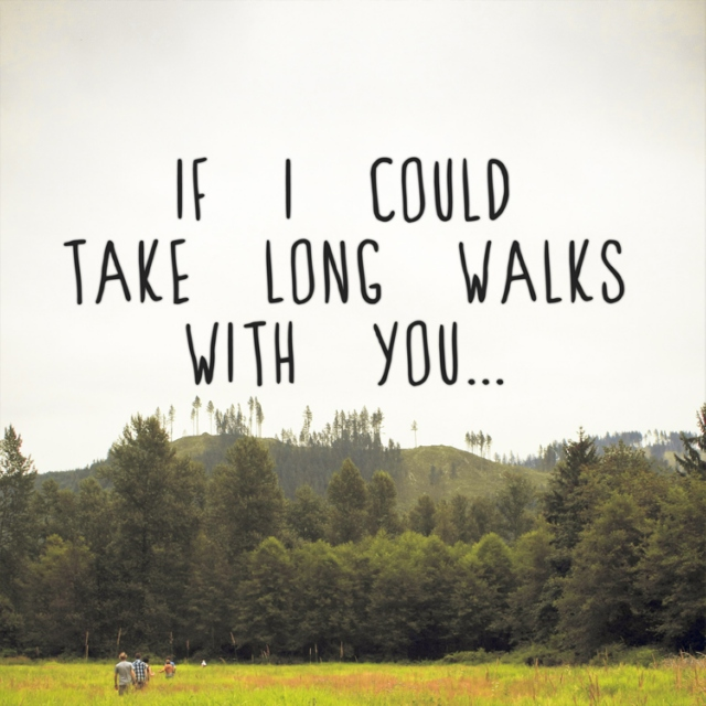 If I Could Take Long Walks With You...