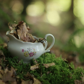 Cup Of Autumn Music Mix