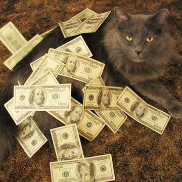Pussy and Money