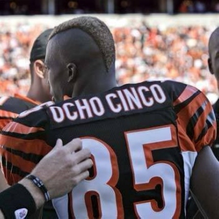 Chad Ochocinco is not the Spanish to English dictionary he used to be