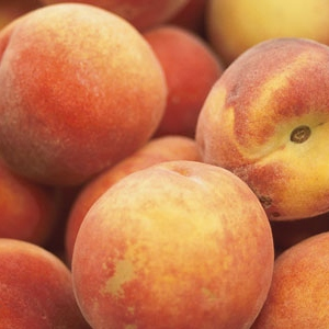 for arabella, my peach