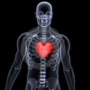 Xray your Heart