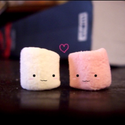 Love Is Like A Marshmallow...Soft, Tasty, and Probably Several Years Old