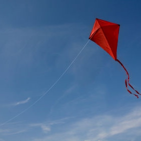 Kite Flying Society