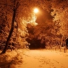 songs to lose yourself in winter to