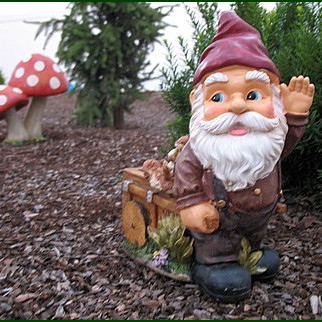 hang out with the gnomes more often