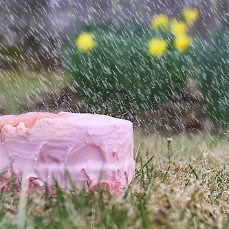 Someone's Left A Cake Out In The Rain