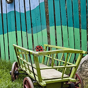 Painted Fences And Other Odds and Ends