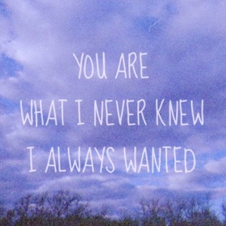 You Are What I Never Knew I Always Wanted