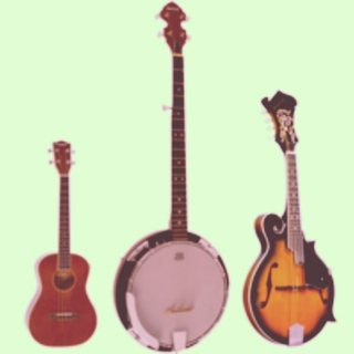 Do uke like the banjo?
