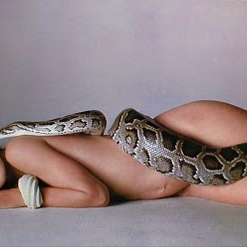 Snake it and take it