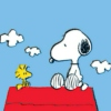 Songs for Snoopy & his girl Wednesday