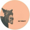 Say What?: an instrumental mix