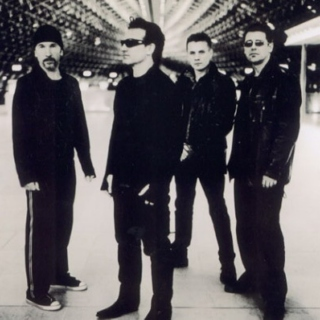 If You Like U2...