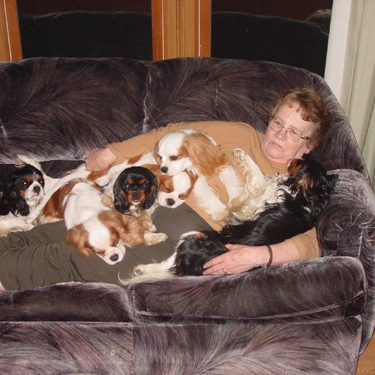 Ode to the Mom Couch