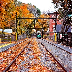 For Autumn: Train Cars and Slide Guitars, Pt. 3