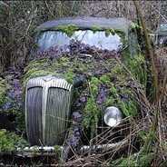 Rural Decay and Damnation: 2011
