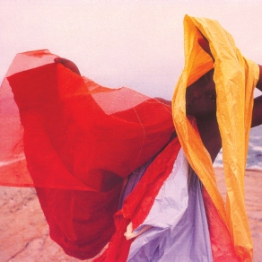 The gallery presents: Helio Oiticica/Parangolé