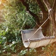 A cold Beer in a Hammock...