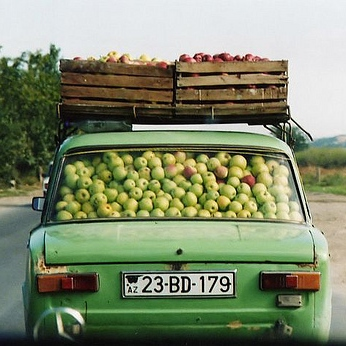 Picking apples to pay for fuel.