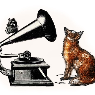 The Foxfires Phonograph