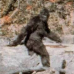 Sasquatch, motherfucker.