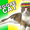 I can has more reggae?