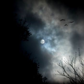 From Earth to Moon on The Crow
