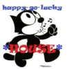 happy-go-lucky house