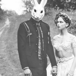 Let's get lost with the white rabbit