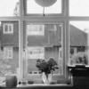 You know I dreamed about you